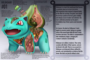 Bulbasaur Anatomy- Pokedex Entry