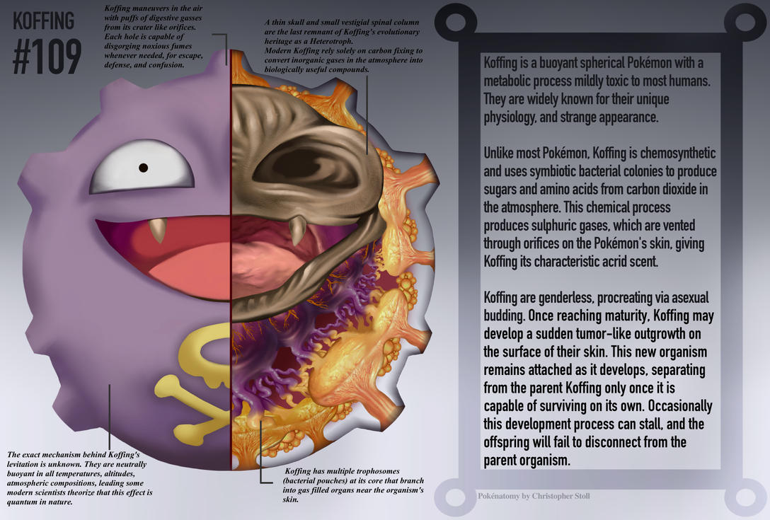 Koffing Anatomy- Pokedex Entry by Christopher-Stoll on DeviantArt