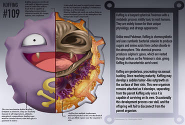 Koffing Anatomy- Pokedex Entry