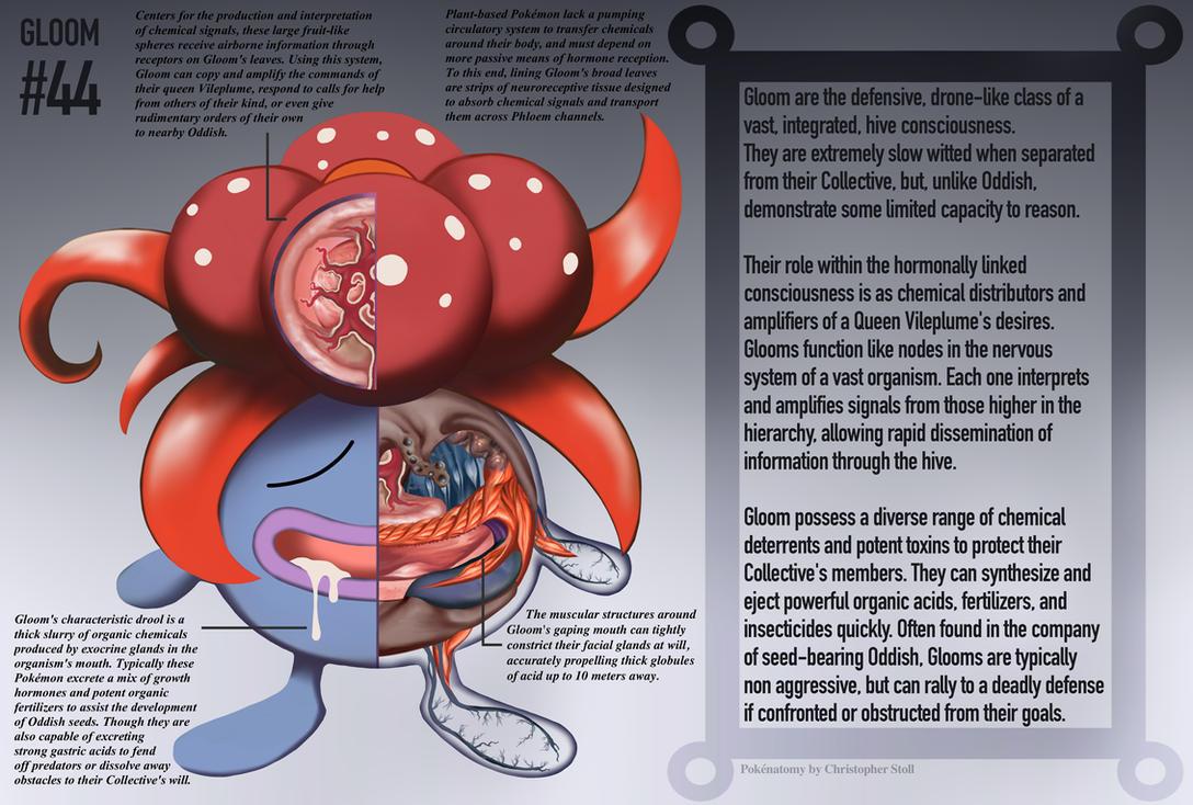 staryu anatomy pokedex - photo #1