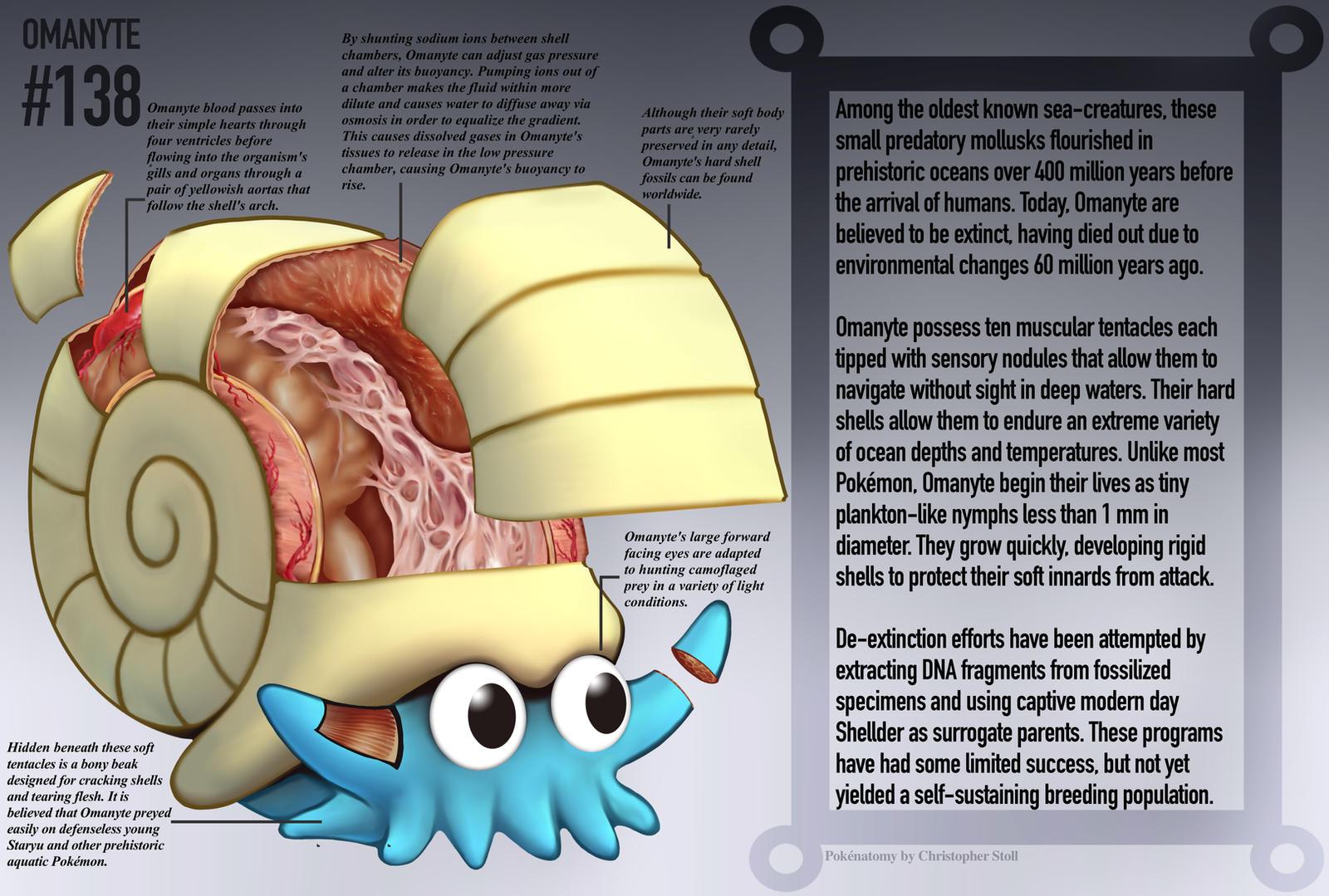 Pokemon Pokemon Anatomy Poster Images Pokemon Images