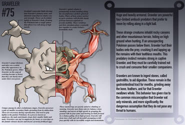 Graveler Anatomy- Pokedex Entry