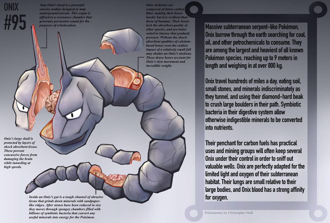 Onix Anatomy- Pokedex Entry by Christopher-Stoll