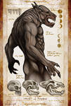 Werewolf Biology and Behavior