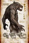 Werewolf Biology and Behavior