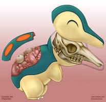 Cyndaquil Anatomy- PokeNatomy Gen II by Christopher-Stoll