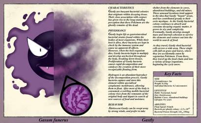 Gastly Anatomy- Pokedex Entry