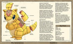 Sandshrew Anatomy- Pokedex Entry