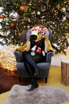 Vesna under Christmas tree