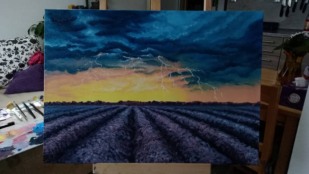 Storm over lavender field