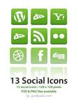 13 green social icon set