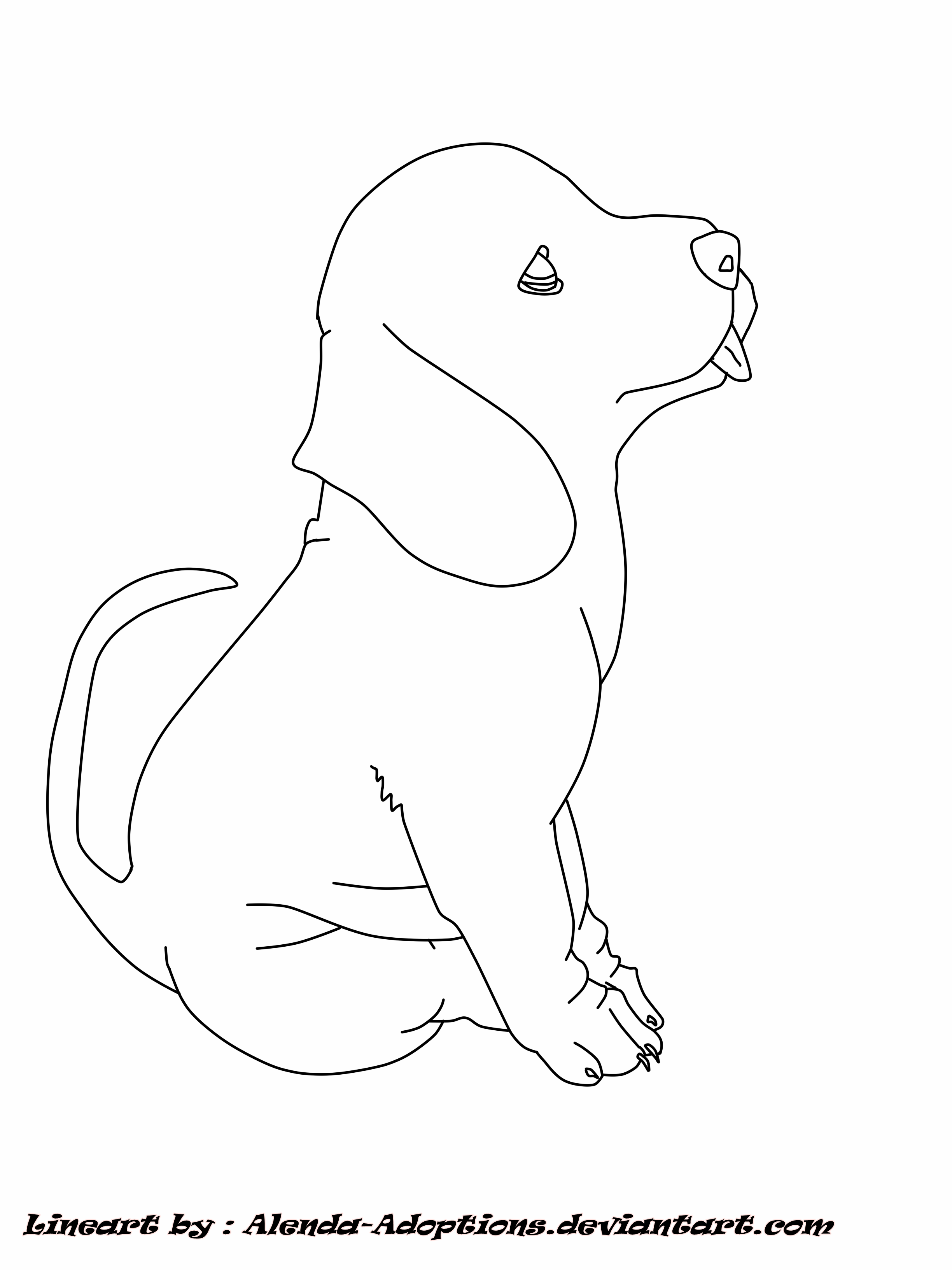 Line Drawing Of Dog : Free dog lineart by alenda adoptions on deviantart