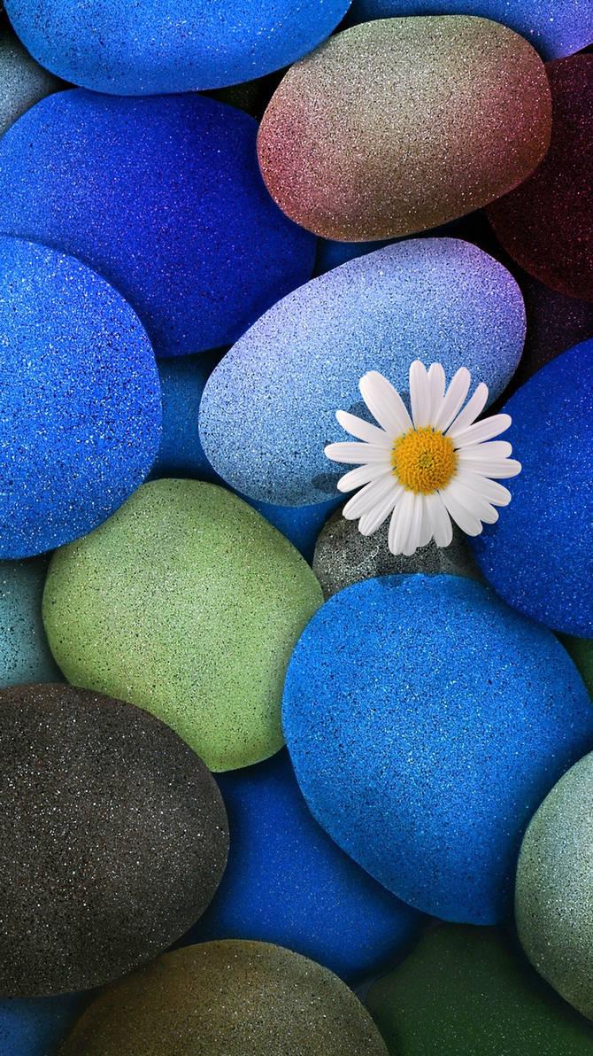 Stone Flower Wallpaper Iphone 6s Plus By Deviantsith17 On Deviantart