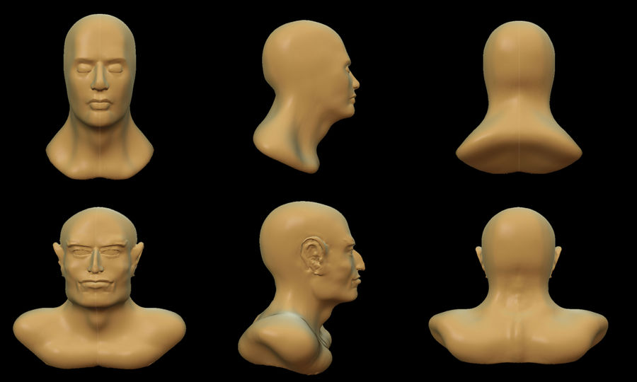 Head model and Theran bust by C-Hillman