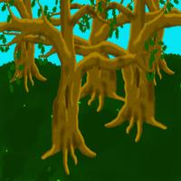 Oak grove by C-Hillman