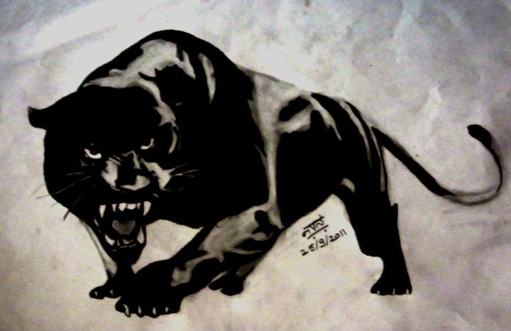 Black jaguar animal drawing - photo#12