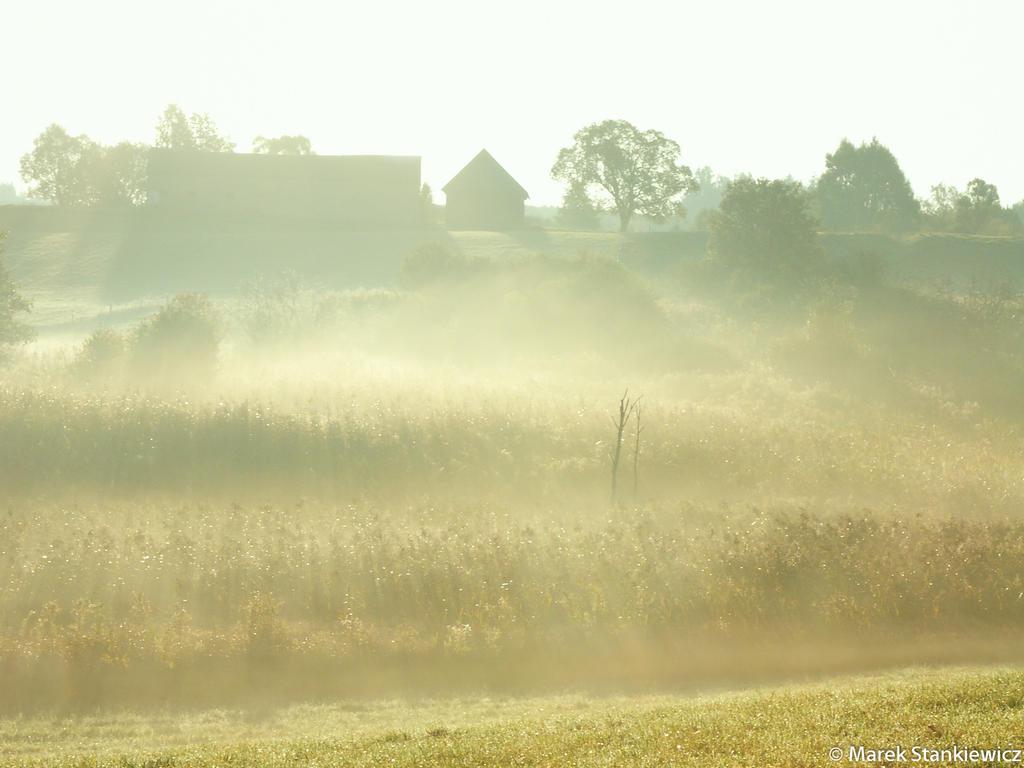 Autumn mist by GreenShadow23