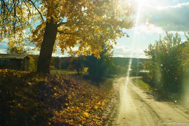 Autumn by GreenShadow23
