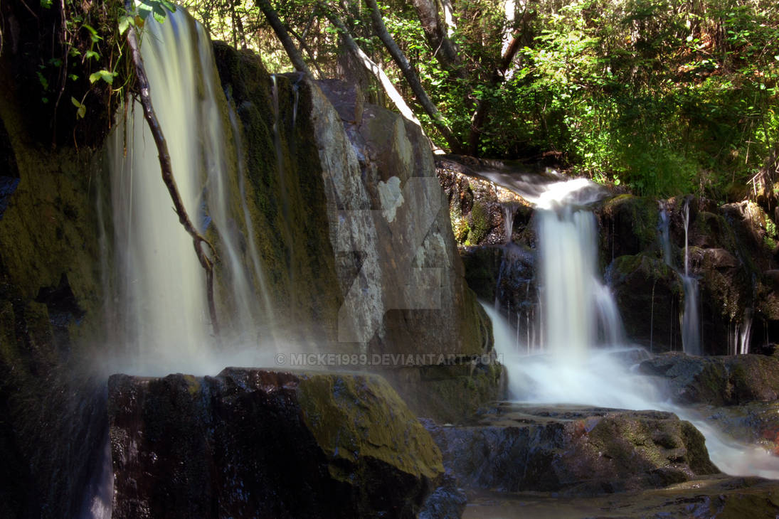Forest Waterfall II