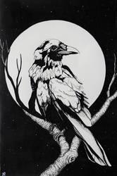 Pale Raven