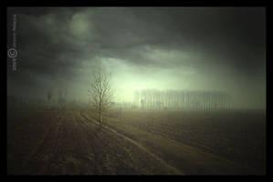 Flashback: encounter with tree