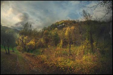 Late Autumn by Vittorio-Pellazza