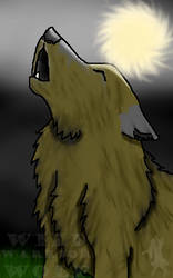 Howling Night by WildWarriorWolf