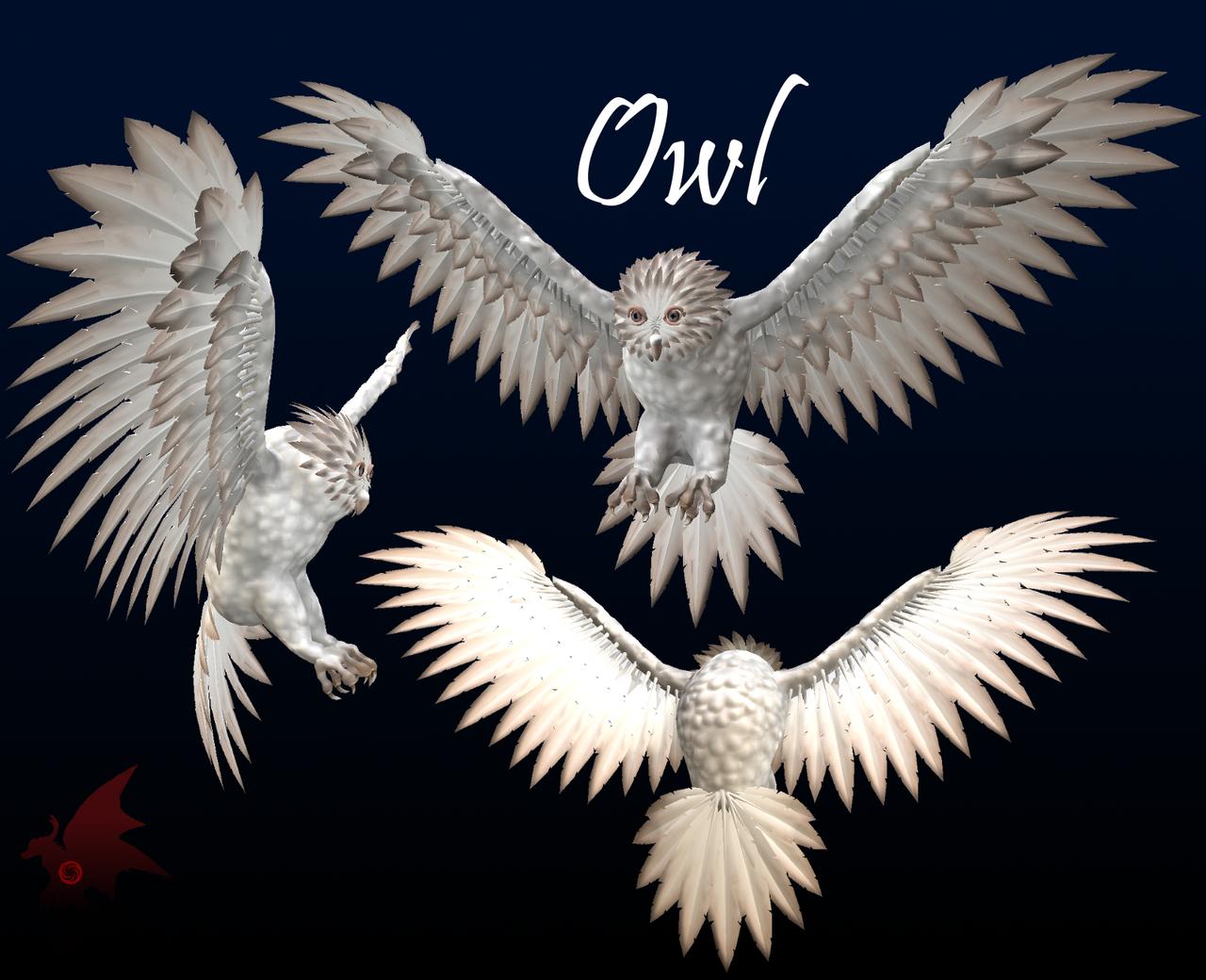 Owl by Nabesima