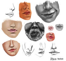 Mouths by amircea
