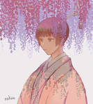 wisteria and kiku