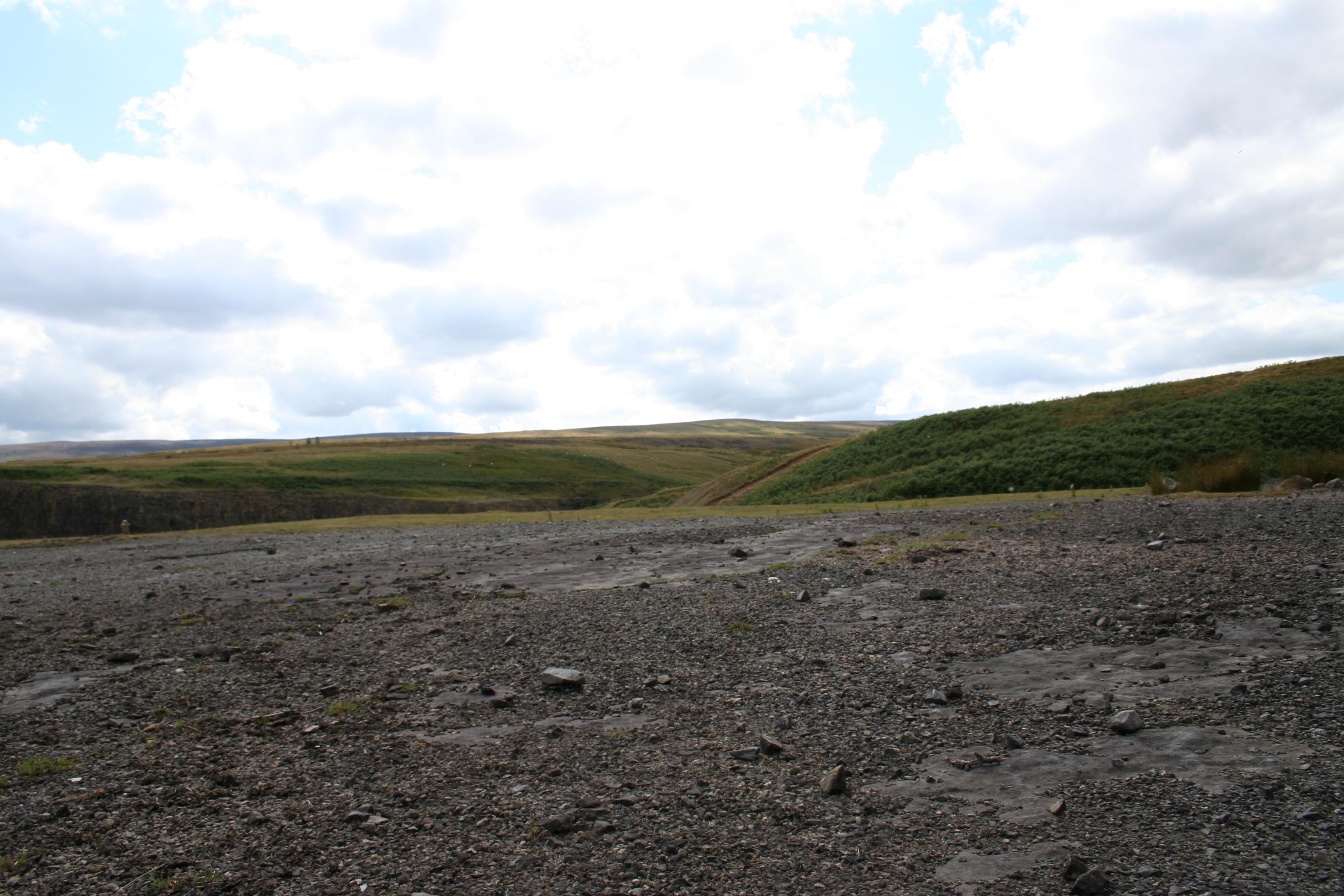 Landscape Stock23