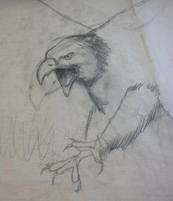Eagle WIP by adorablyfreaky