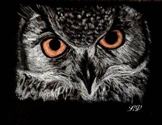 owl by lolobild