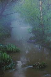 Fog creek by fbjon