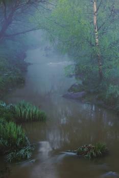 Fog creek
