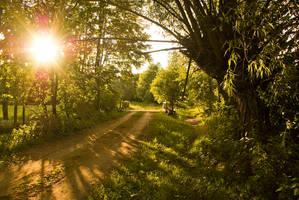 The beginning Summer 2011 by grindz0ne