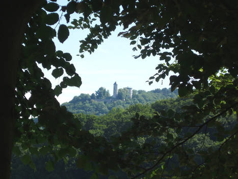 Castle View from the Woods