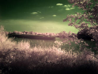River Barge in Infrared