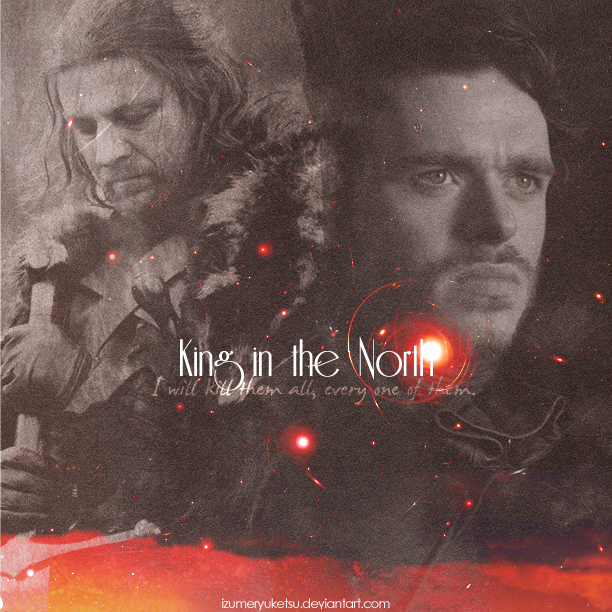 King In The North Game Of Thrones By IzumeRyuketsu