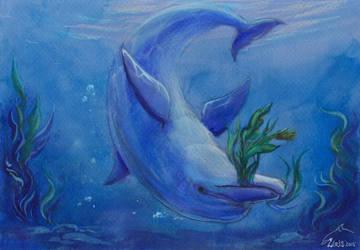 Dolphin's Gift by Liris-san