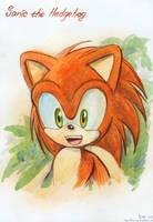Sonic's Childhood by Liris-san