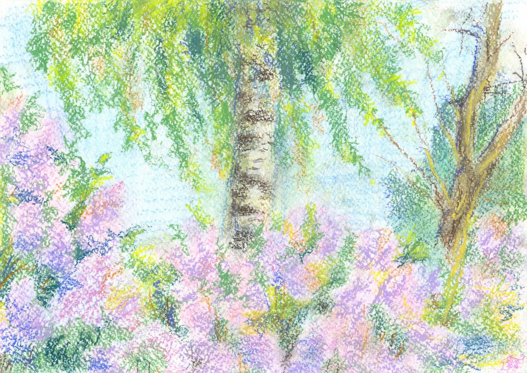 Birch and Lilac by Liris-san