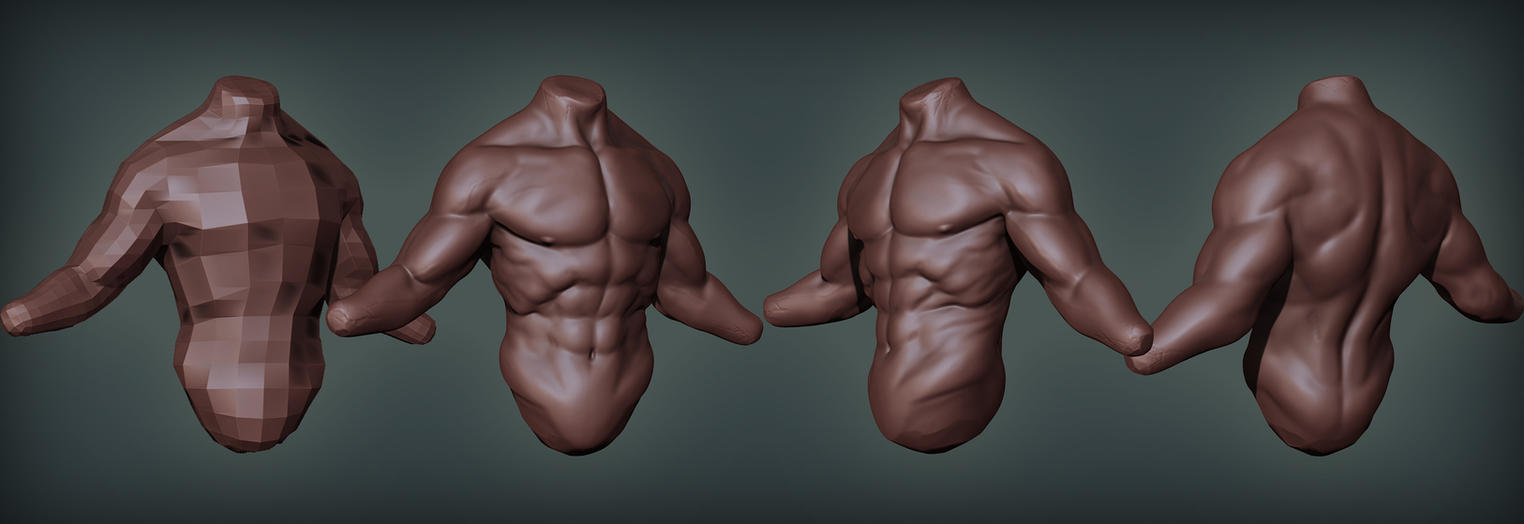 Male torso anatomy sketch by digitalinkrod on DeviantArt