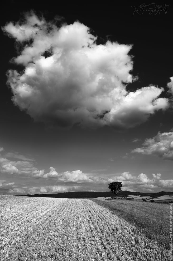 The Big Cloud by XavierSchneider