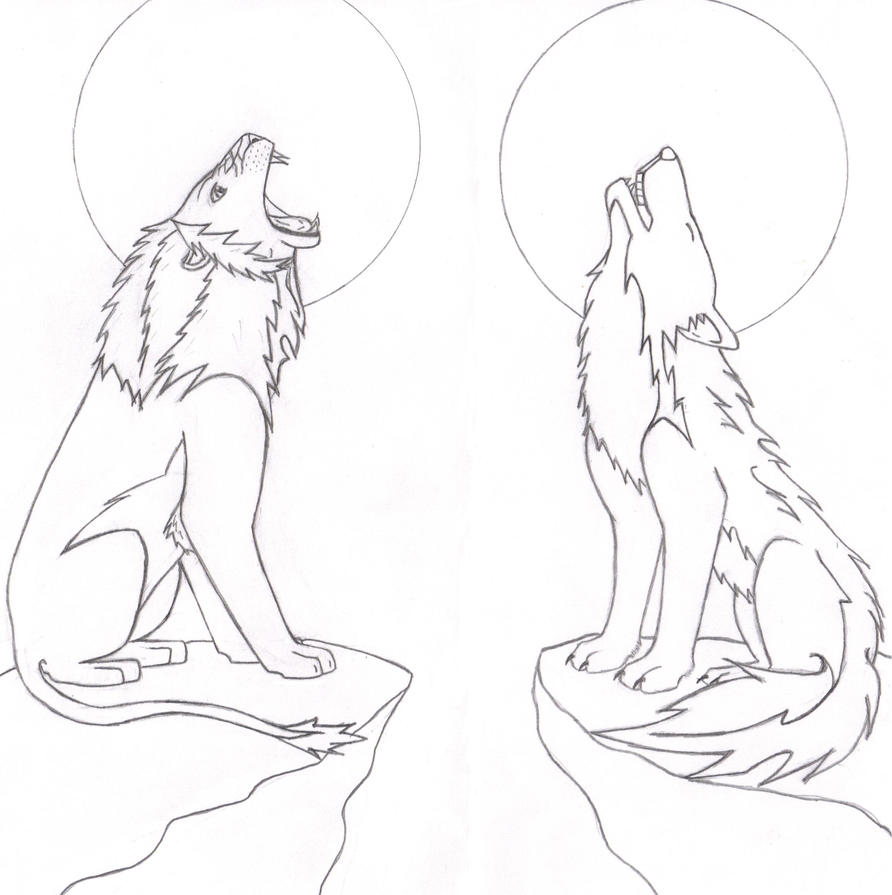 Roaring Lion And Howling Wolf By Strife6 On DeviantArt