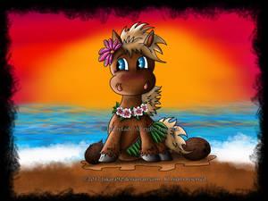 Hawaii Pony