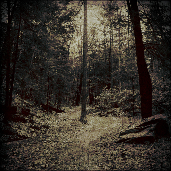 by the old path by orbatid