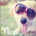 Avatar chien Lunettes by Tulipefire