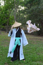 Kyoraku Shunsui: Flight or Fight by Lalita-Zilli