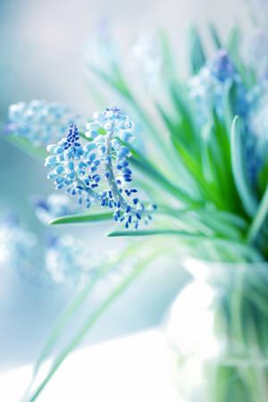 BLUE MOOD by wiwionart
